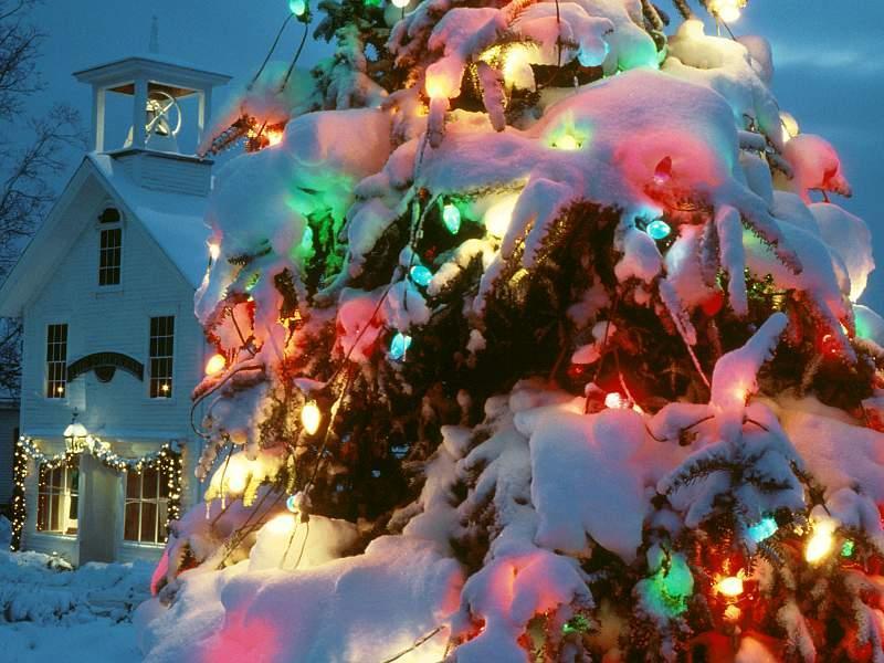 Sfondi Natale - Sfondo di Natale con albero di Natale